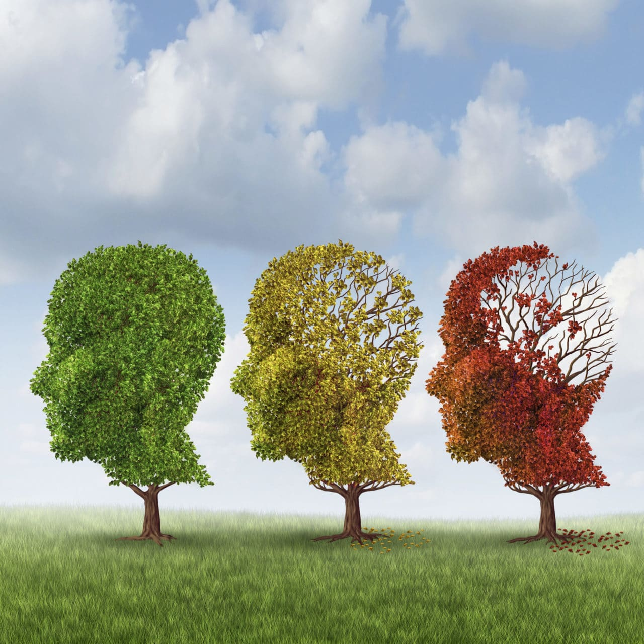 Graphic of three trees, each with branches in the shape of a human head in profile. The far left tree is green with full foliage, the center tree is yellow-green having lost some of its leaves from the back of the head, and the far right has red leaves mostly near the face.